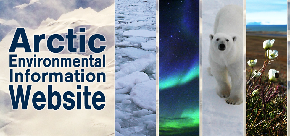 Arctic Environmental Information Website