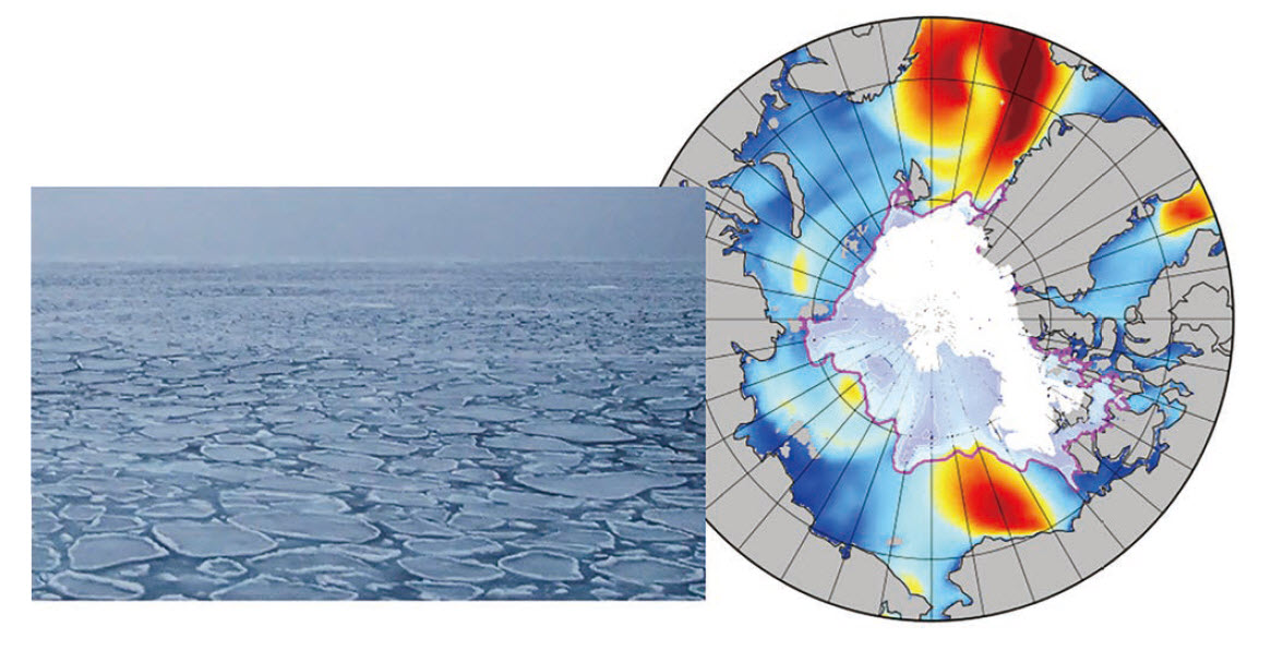 Waves propagated under sea ice (photo), and the results of wave simulation in the Arctic Ocean in summer (figure)