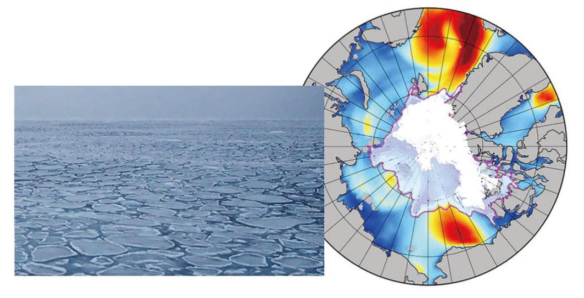 海氷下を伝搬する波浪および夏季北極海の波浪シミュレーション結果