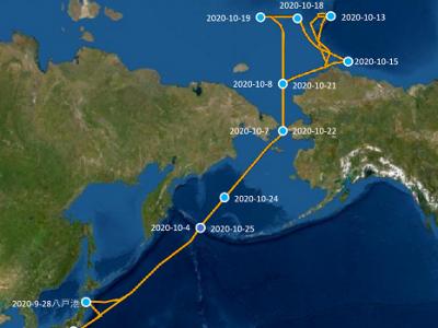 みらい航海2020の軌跡
